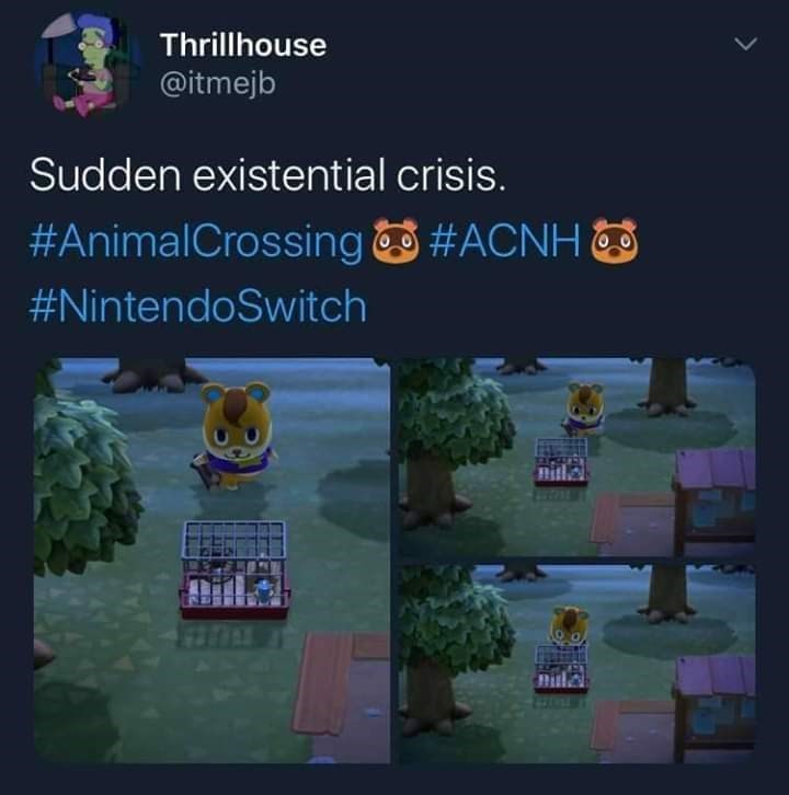 Text - Thrillhouse @itmejb Sudden existential crisis. #AnimalCrossing #ACNH #NintendoSwitch Dilla