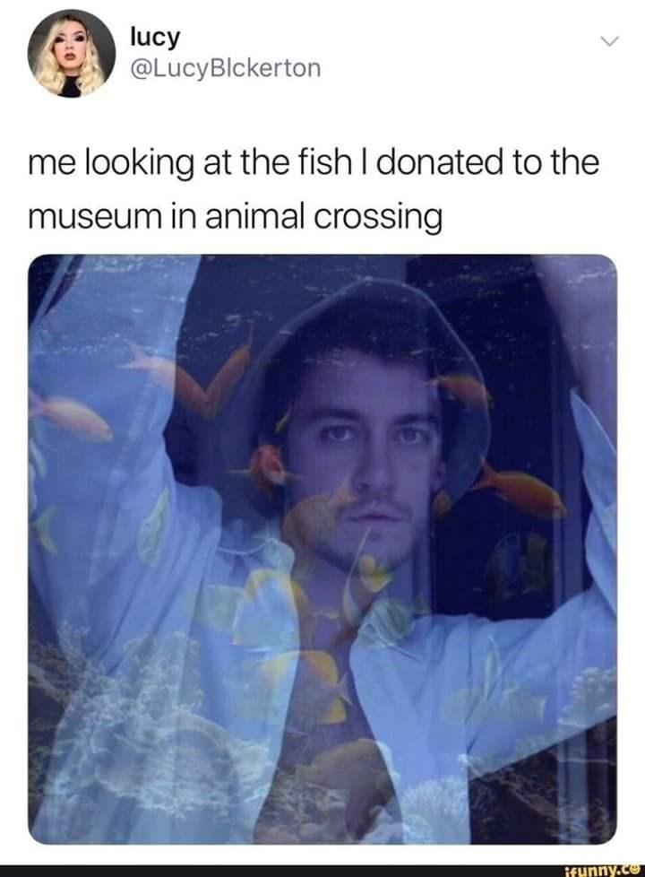 Text - lucy @LucyBlckerton me looking at the fish I donated to the museum in animal crossing Brunny.co
