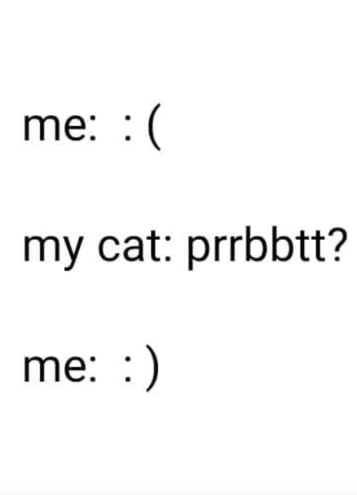 me: :( my cat: prrbbtt me: :)