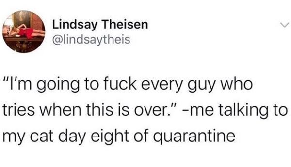 """Text - Lindsay Theisen @lindsaytheis """"I'm going to fuck every guy who tries when this is over."""" -me talking to my cat day eight of quarantine"""
