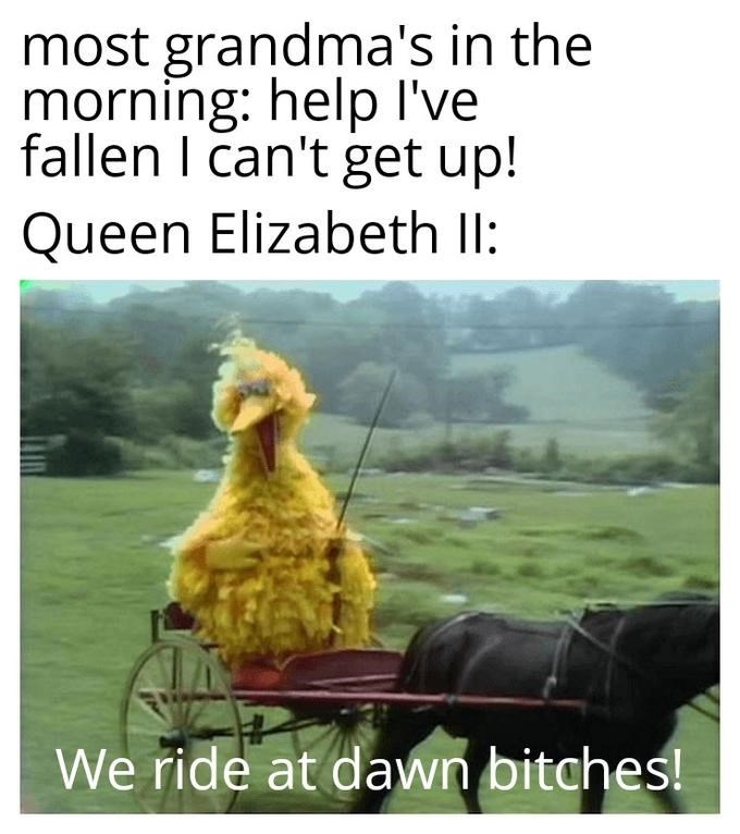 Text - most grandma's in the morning: help I've fallen I can't get up! Queen Elizabeth II: We ride at dawn bitches!