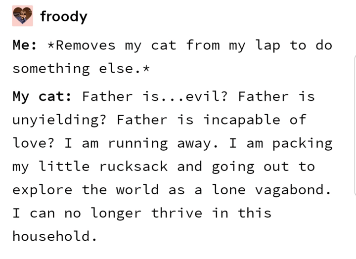 Text - froody Me: *Removes my cat from my lap to do something else.* My cat: Father is...evil? Father is unyielding? Father is incapable of love? I am running away. I am packing my little rucksack and going out to explore the world as a lone vagabond. I can no longer thrive in this household.