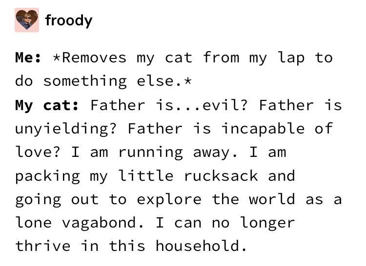 me removes my cat from my lap to do something else father is evil father is unyielding father is incapable of love i am running away i am packing my little rucksack and going out to explore