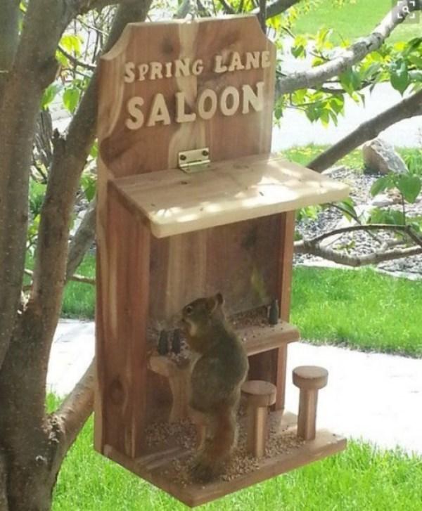 Cat furniture - SPRING LANE SALOON