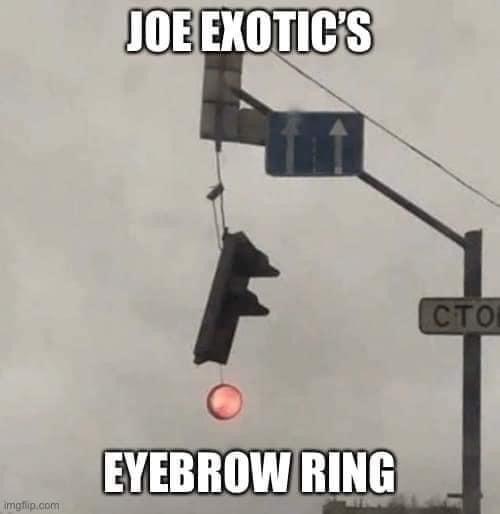 Room - JOE EXOTIC'S (сто EYEBROW RING imgfip.com