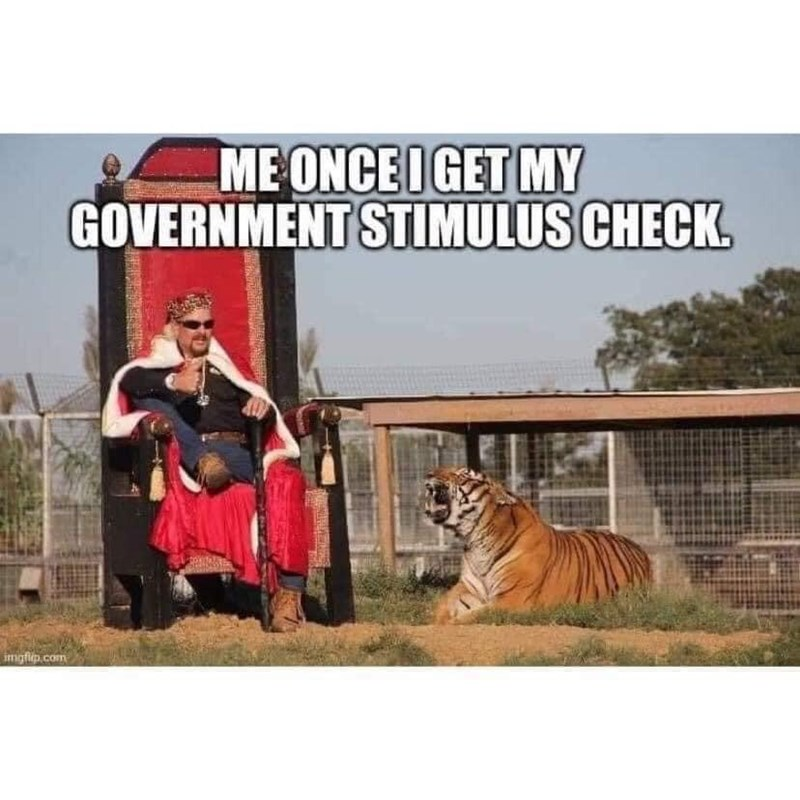 Bengal tiger - ME ONCE IGET MY GOVERNMENT STIMULUS CHECK. imigfiep.com