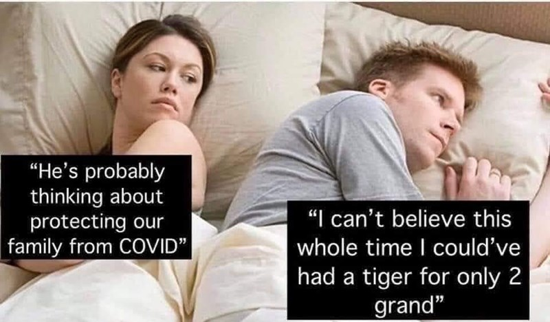 """Facial expression - """"He's probably thinking about protecting our family from COVID"""" """"I can't believe this whole time I ould've had a tiger for only 2 grand"""""""