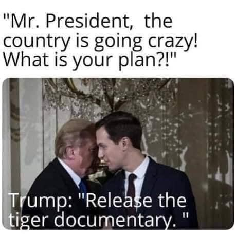 """Photograph - """"Mr. President, the country is going crazy! What is your plan?!"""" Trump: """"Release the tiger documentary. 11"""