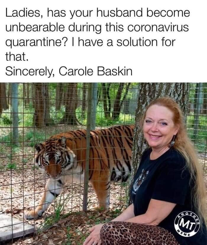 Tiger - Ladies, has your husband become unbearable during this coronavirus quarantine? I have a solution for that. Sincerely, Carole Baskin MT) MEME