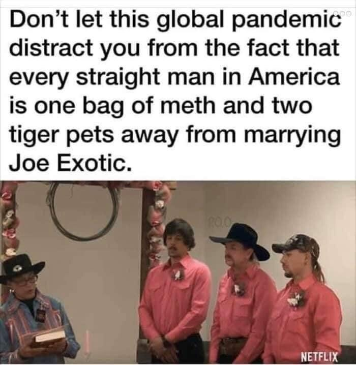 Text - Don't let this global pandemic distract you from the fact that every straight man in America is one bag of meth and two tiger pets away from marrying Joe Exotic. ROO NETFLIX