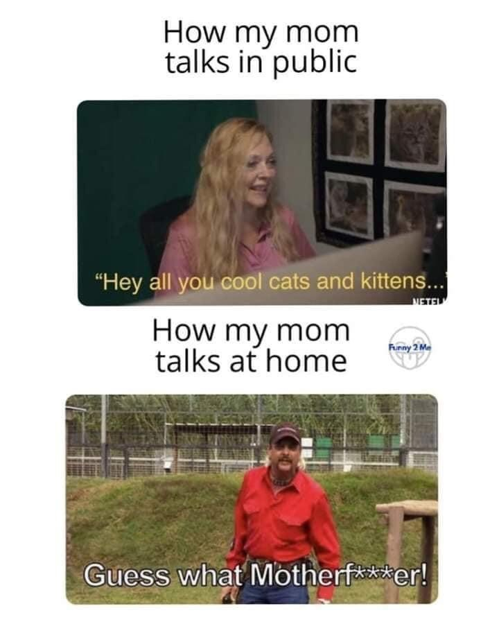 """Text - How my mom talks in public """"Hey all you cool cats and kittens... METEL How my mom talks at home Funny 2 Me Guess what Motherf***er!"""