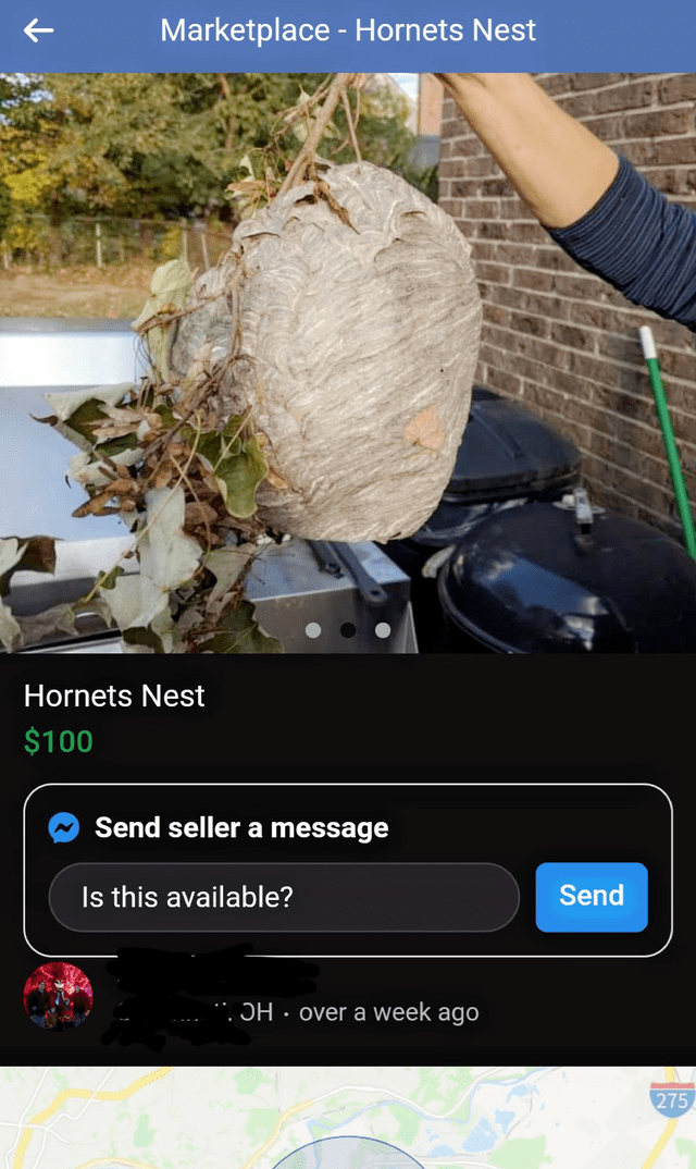 Tree - Marketplace - Hornets Nest Hornets Nest $100 Send seller a message Is this available? Send . OH · over a week ago 275