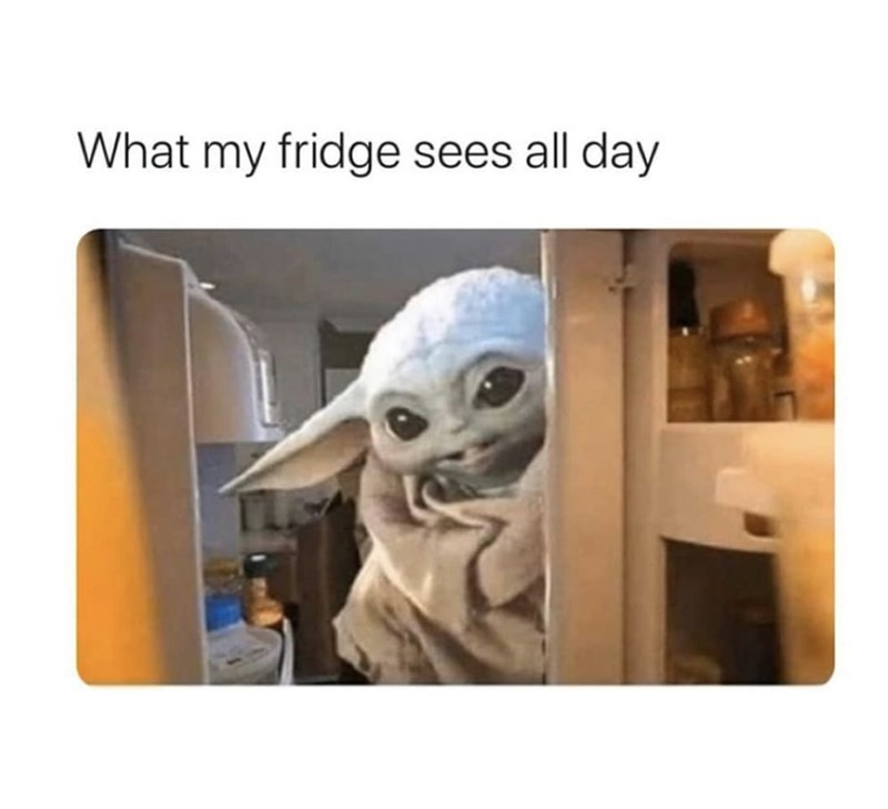 Animation - What my fridge sees all day