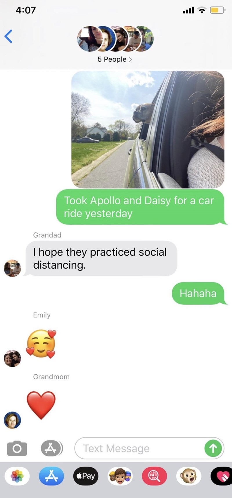 Product - 4:07 ull 5 People > Took Apollo and Daisy for a car ride yesterday Grandad I hope they practiced social distancing. Hahaha Emily Grandmom Text Message Pay