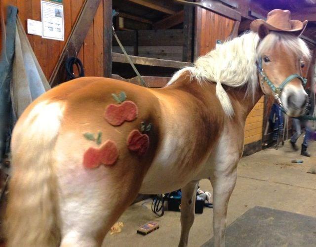 applejack horse - 9464160512