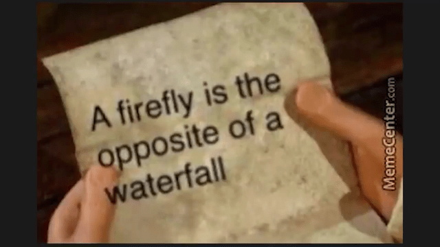 Text - A firefly is the opposite of a waterfall MemeCenter.com