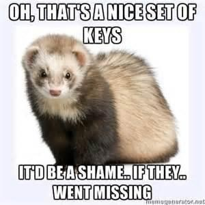 Mammal - OH, THAT'SANICESET OF KEYS ITDBEASHAMEIF THEY. WENT MISSING nerutor.net