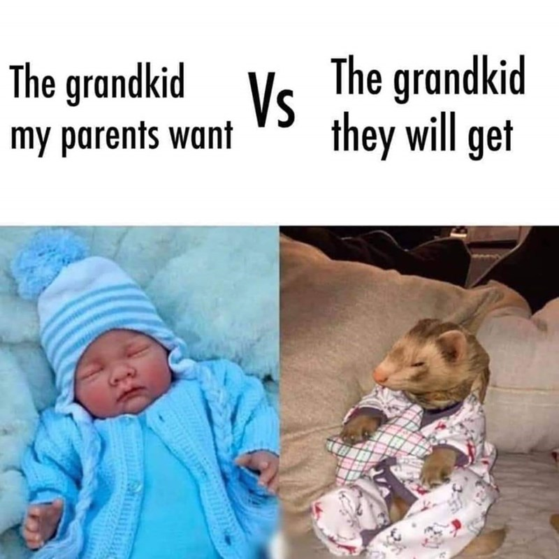 People - The grandkid Vs they will get The grandkid my parents want