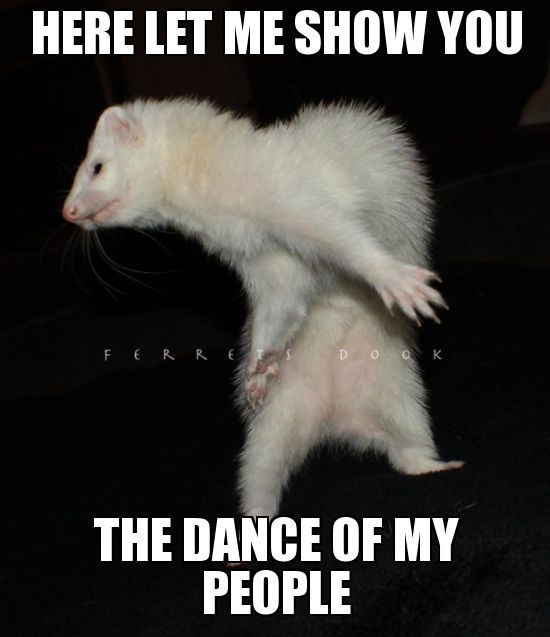 Photo caption - HERE LET ME SHOW YOU FERR E THE DANCE OF MY PEOPLE