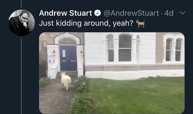 Property - Andrew Stuart O @AndrewStuart · 4d Just kidding around, yeah?