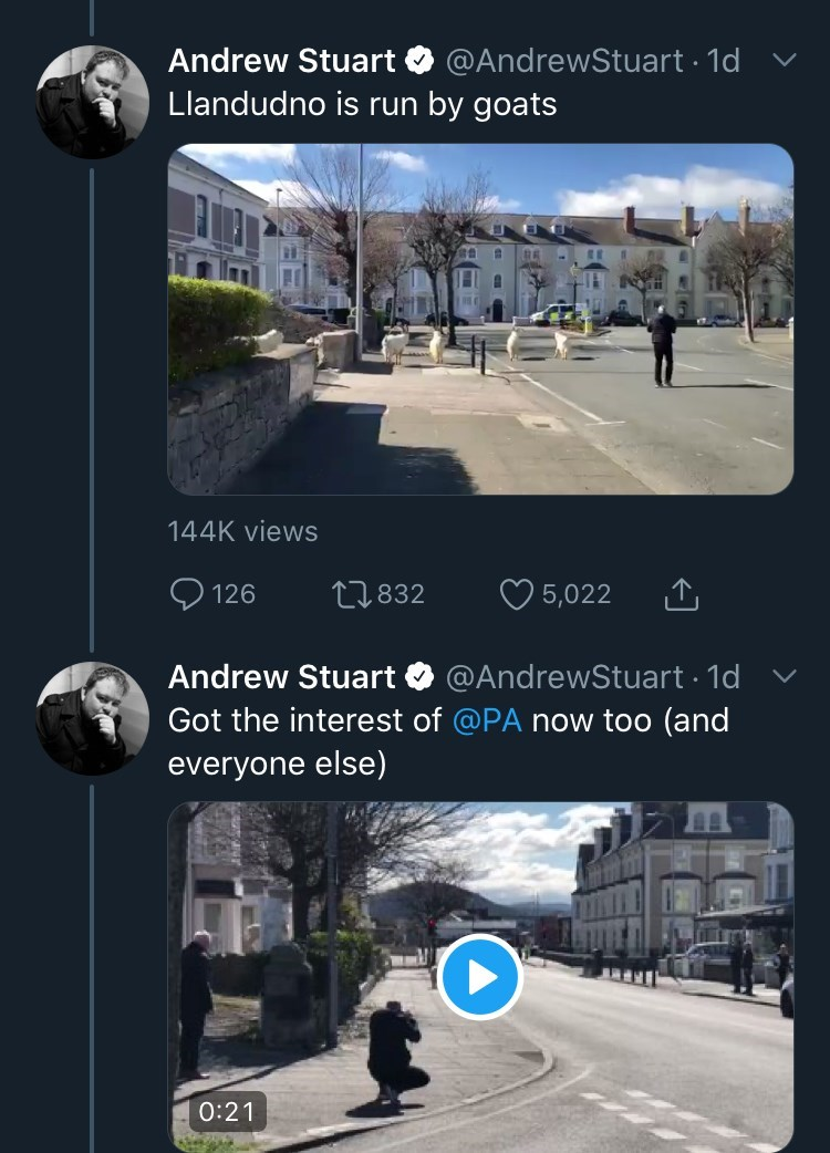 Font - Andrew Stuart @AndrewStuart · 1d v Llandudno is run by goats 144K views 126 27832 5,022 Andrew Stuart @AndrewStuart 1d v Got the interest of @PA now too (and everyone else) 0:21