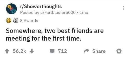 Text - r/Showerthoughts Posted by u/Fartblaster5000 • 1mo 3 8 Awards Somewhere, two best friends are meeting for the first time. 56.2k 712 Share