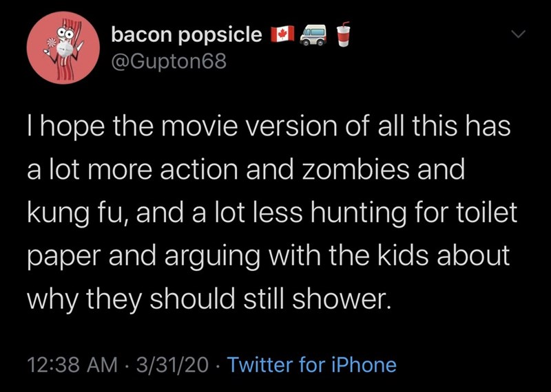Text - bacon popsicle D @Gupton68 CO Thope the movie version of all this has a lot more action and zombies and kung fu, and a lot less hunting for toilet paper and arguing with the kids about why they should still shower. 12:38 AM · 3/31/20 · Twitter for iPhone
