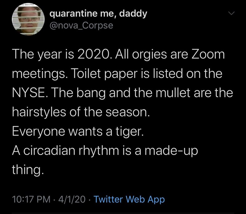 Text - ou did it firs quarantine me, daddy @nova_Corpse The year is 2020. All orgies are Zoom meetings. Toilet paper is listed on the NYSE. The bang and the mullet are the hairstyles of the season. Everyone wants a tiger. A circadian rhythm is a made-up thing. 10:17 PM · 4/1/20 · Twitter Web App