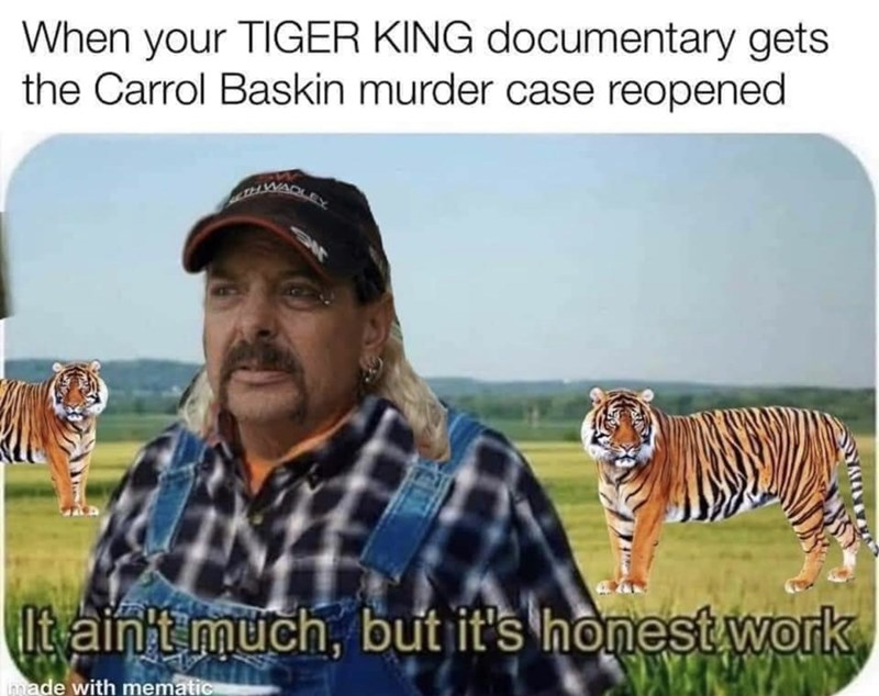 Wildlife - When your TIGER KING documentary gets the Carrol Baskin murder case reopened WADLEY It ainit much, but it's honest work innade with mematic