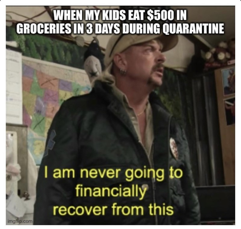 Photo caption - WHEN MY KIDS EAT $500 IN GROCERIES IN 3 DAYS DURING QUARANTINE I am never going to financiallý recover from this imgflip.com