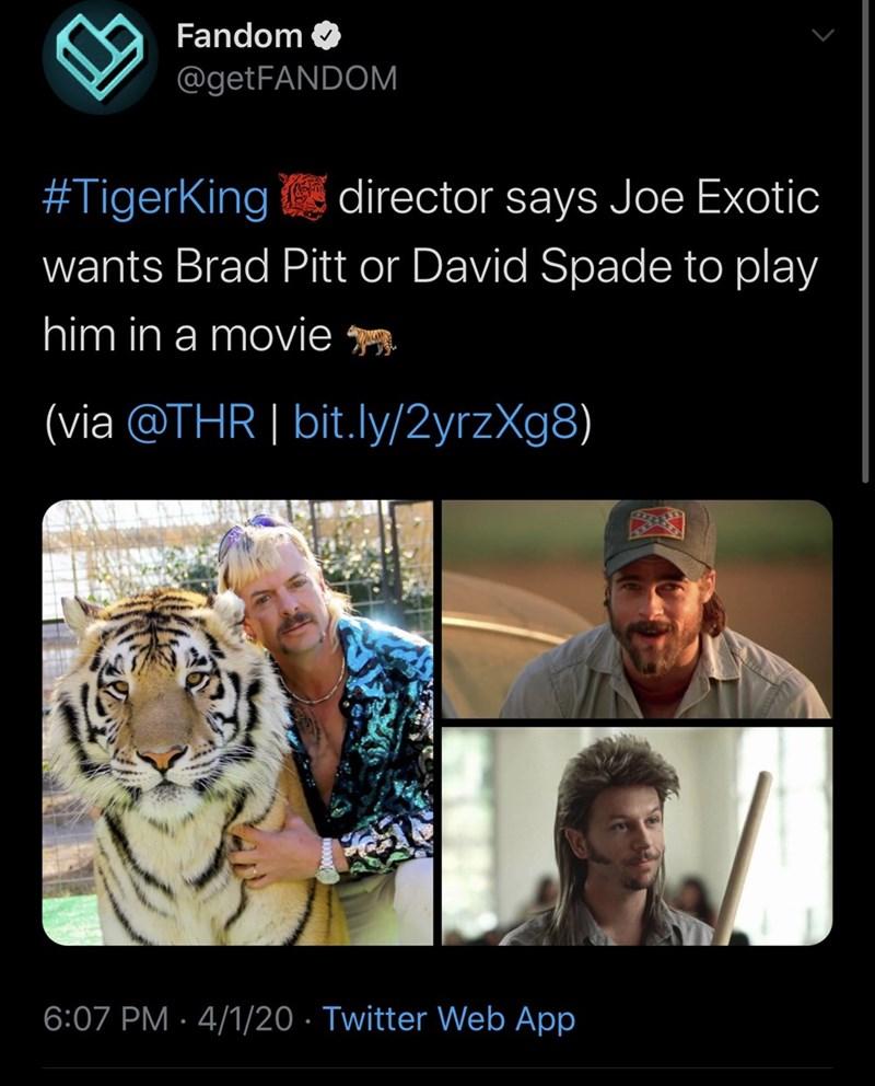Bengal tiger - Fandom @getFANDOM #TigerKing director says Joe Exotic wants Brad Pitt or David Spade to play him in a movie (via @THR | bit.ly/2yrzXg8) 6:07 PM · 4/1/20 · Twitter Web App