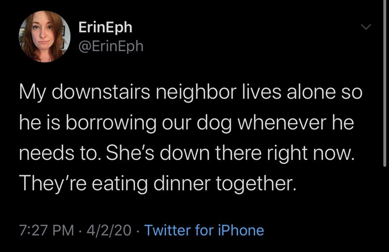 Text - ErinEph @ErinEph My downstairs neighbor lives alone so he is borrowing our dog whenever he needs to. She's down there right now. They're eating dinner together. 7:27 PM · 4/2/20 · Twitter for iPhone