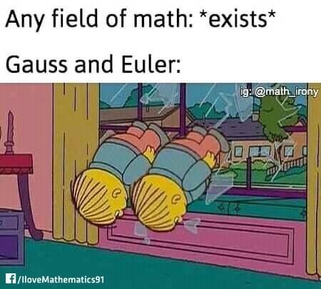 Cartoon - Any field of math: *exists* Gauss and Euler: ig: @math_irony 414 f/lloveMathematics91