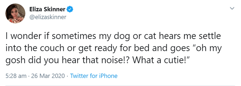 "Text - Eliza Skinner @elizaskinner I wonder if sometimes my dog or cat hears me settle into the couch or get ready for bed and goes ""oh my gosh did you hear that noise!? What a cutie!"" 5:28 am · 26 Mar 2020 · Twitter for iPhone"