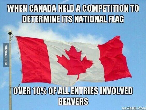 Tree - WHEN CANADA HELDACOMPETITION TO DETERMINE ITS NATIONAL FLAG OVER 10% OFALL ENTRIES INVOLVED BEAVERS MEMEFUL.COM VIA 9GAG.COM