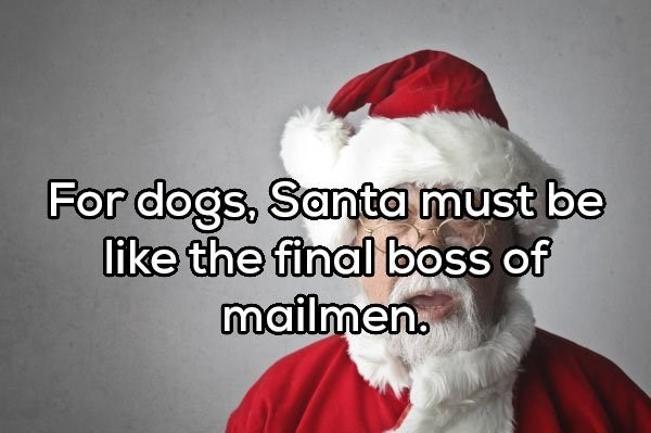 Santa claus - For dogs, Santa must be like the final boss of mailmen.
