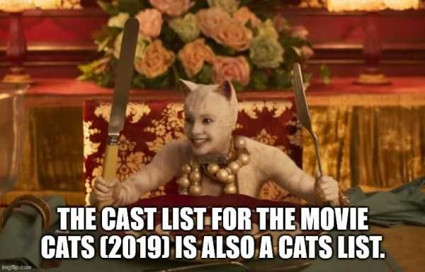 Photo caption - THE CAST LIST FOR THE MOVIE CATS (2019) IS ALSO A CATS LIST. ngfip.com