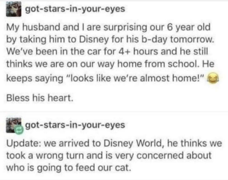 """Text - got-stars-in-your-eyes My husband and I are surprising our 6 year old by taking him to Disney for his b-day tomorrow. We've been in the car for 4+ hours and he still thinks we are on our way home from school. He keeps saying """"looks like we're almost home!"""" Bless his heart. got-stars-in-your-eyes Update: we arrived to Disney World, he thinks we took a wrong turn and is very concerned about who is going to feed our cat."""