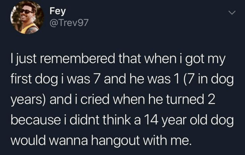 Text - Fey @Trev97 Ijust remembered that when i got my first dog i was 7 and he was 1 (7 in dog years) and i cried when he turned 2 because i didnt think a 14 year old dog would wanna hangout with me.
