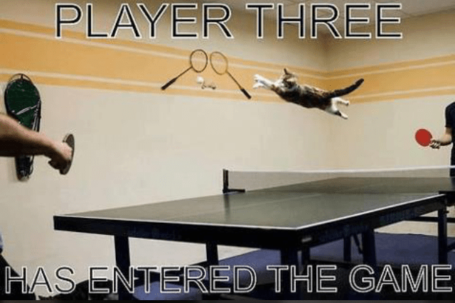 Ping pong - PLAYER THREE HAS ENTERED THE GAME
