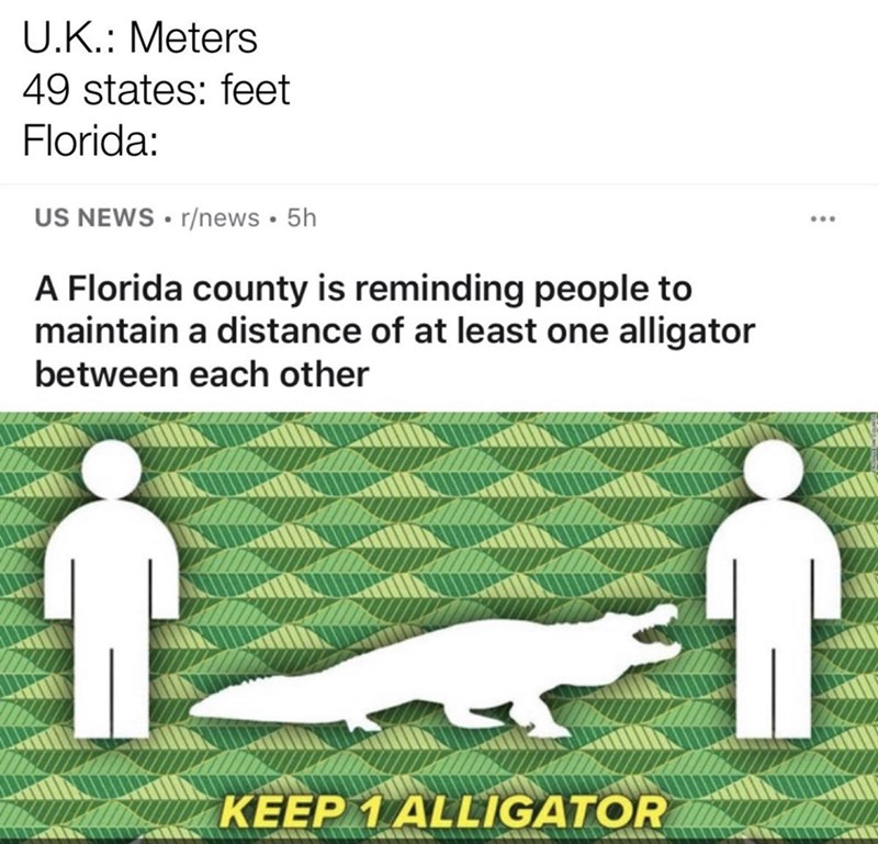 Text - U.K.: Meters 49 states: feet Florida: US NEWS • r/news · 5h A Florida county is reminding people to maintain a distance of at least one alligator between each other KEEP 1 ALLIGATOR