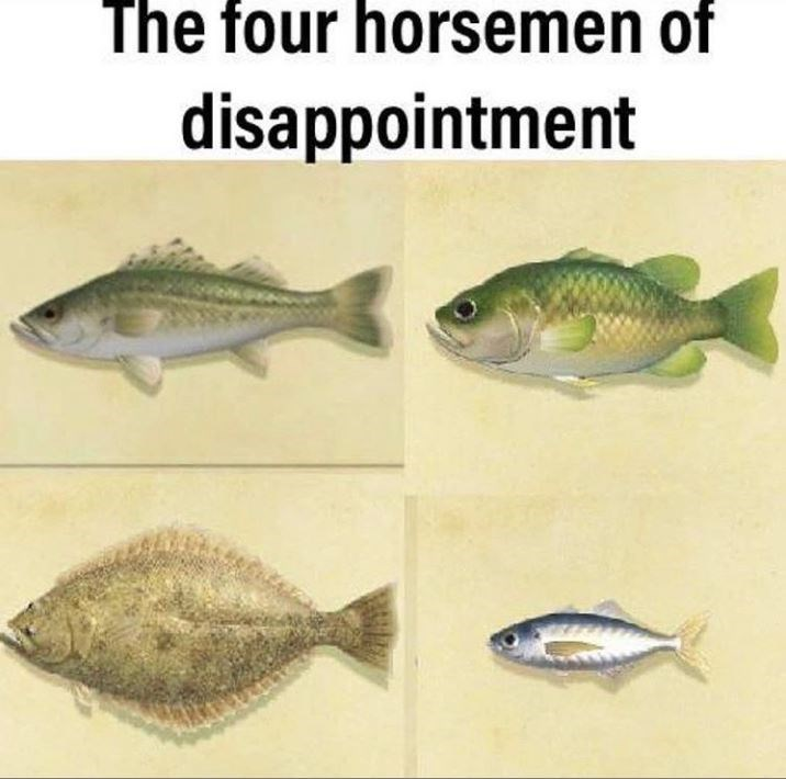 Fish - The four horsemen of disappointment