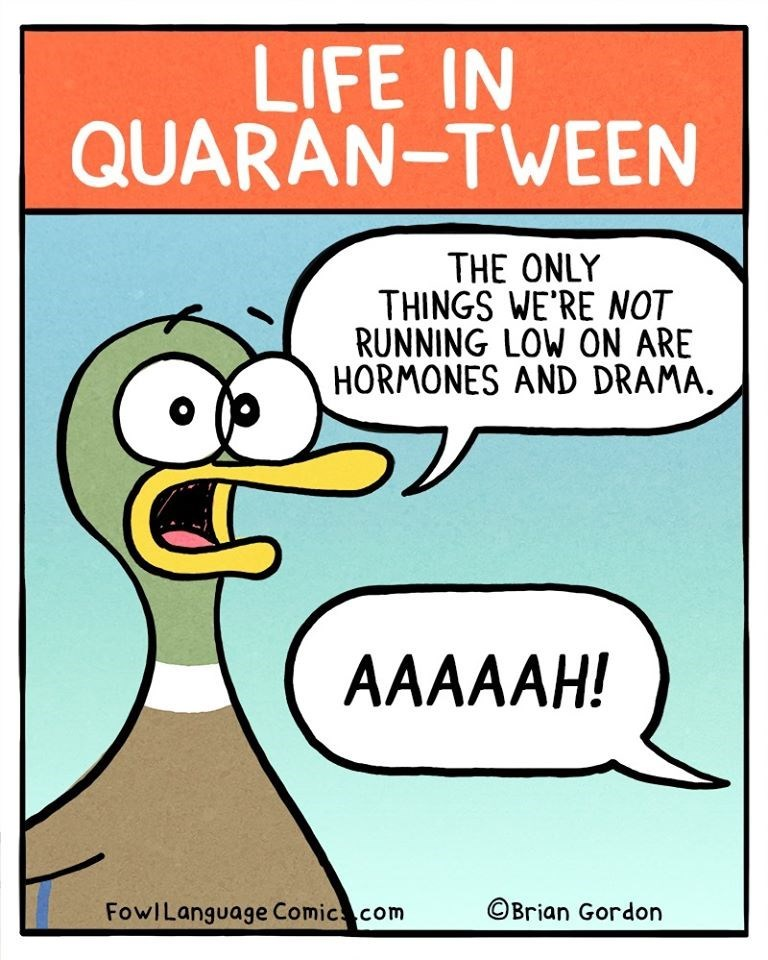 Cartoon - LIFE IN QUARAN-TWEEN THE ONLY THINGS WE'RE NOT RUNNING LOW ON ARE HORMONES AND DRAMA. AAAAАН! FowILanguage Comic com ©Brian Gordon
