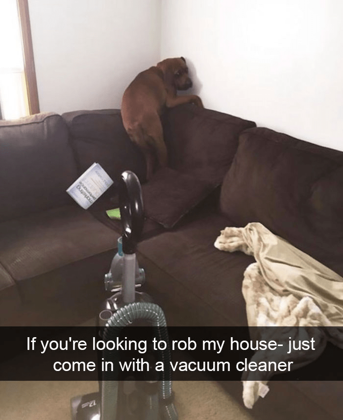 Photography - If you're looking to rob my house- just come in with a vacuum cleaner pertmance