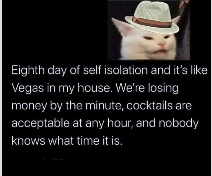 Eighth day of self isolation and it's like Vegas in my house. We're losing money by the minute, cocktails are acceptable at any hour, and nobody knows what time it is. smudge the cat with a hat