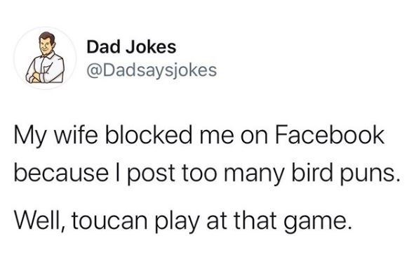 Text - Text - Dad Jokes @Dadsaysjokes My wife blocked me on Facebook because I post too many bird puns. Well, toucan play at that game.