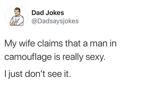 Text - Text - Dad Jokes @Dadsaysjokes My wife claims that a man in camouflage is really sexy. I just don't see it.