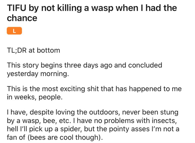 Wasp Spawns In Guy's Bathroom, Duel Ensues