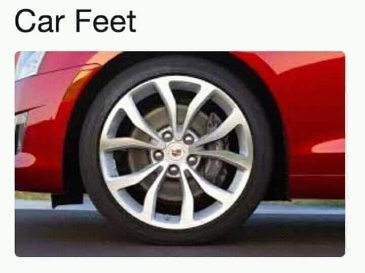 Land vehicle - Car Feet