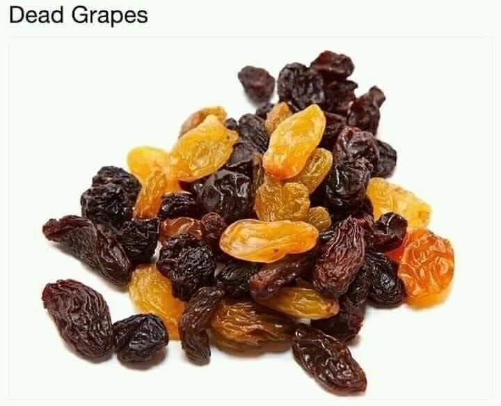 Sultana - Dead Grapes
